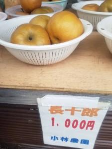 「小林農園」様から撮影の許可を頂きました!利府梨「長十郎」です!ジューシーで甘く、とても美味しかったです。